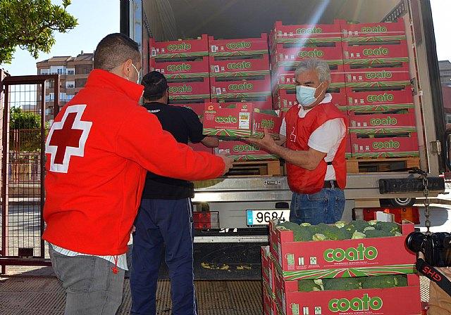 Coato dona 1.300 kilos de brócoli ecológico a Cruz Roja Española - 2, Foto 2