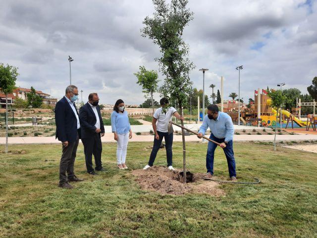 Alcantarilla se suma a la campaña Un árbol por Europa con la plantación de una encina en el Parque del Acueducto - 2, Foto 2