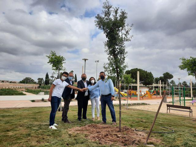 Alcantarilla se suma a la campaña Un árbol por Europa con la plantación de una encina en el Parque del Acueducto - 3, Foto 3