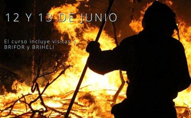 Alive organiza un curso de auxiliar especialista en incendios forestales - 1, Foto 1