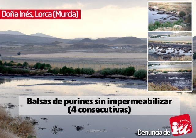 IU-Verdes muestra la otra cara de la ganadería intensiva en las Tierras Altas de Lorca - 2, Foto 2