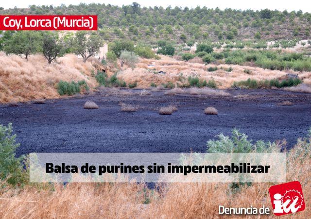 IU-Verdes muestra la otra cara de la ganadería intensiva en las Tierras Altas de Lorca - 5, Foto 5