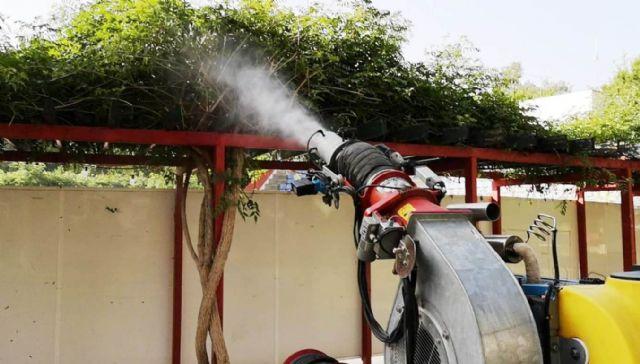 Instalan trampas para vigilar la presencia del mosquito tigre, Foto 5