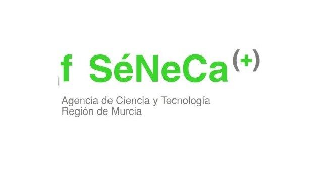 La Fundación Séneca convoca 23 contratos predoctorales de personal investigador y 12 becas de formación posdoctoral - 1, Foto 1