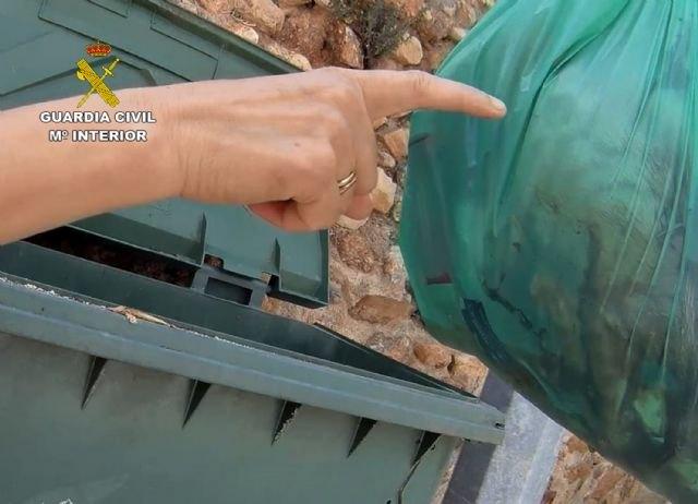 La Guardia Civil investiga a un vecino de Alhama de Murcia por la muerte violenta de un gato - 1, Foto 1