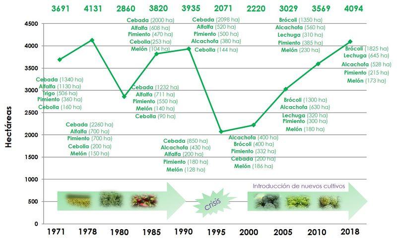 Innovaci�n varietal y futuro de la agricultura totanera, Foto 2