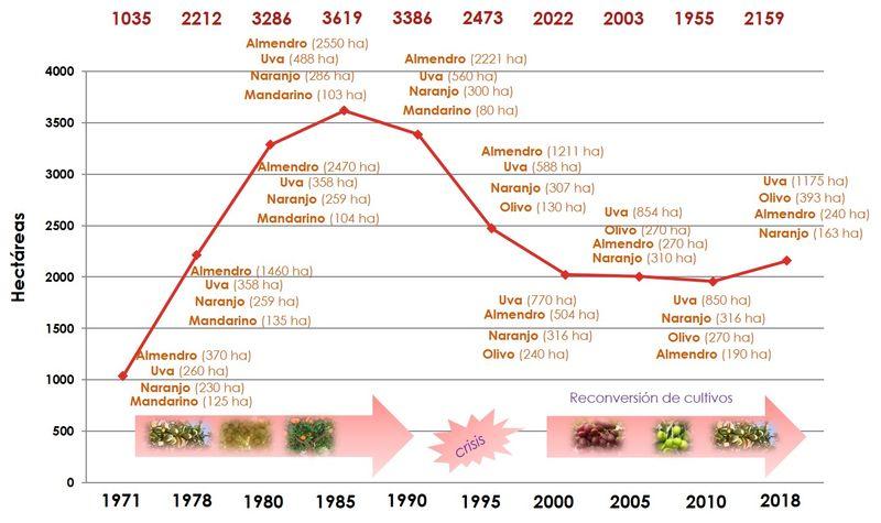 Innovación varietal y futuro de la agricultura totanera, Foto 3