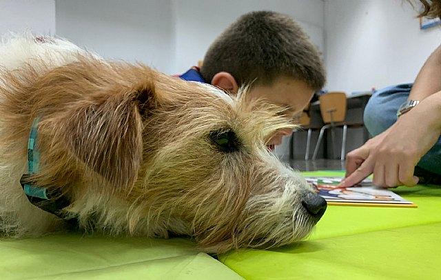 Las intervenciones asistidas con animales y su efecto directo en el bienestar de las personas - 1, Foto 1