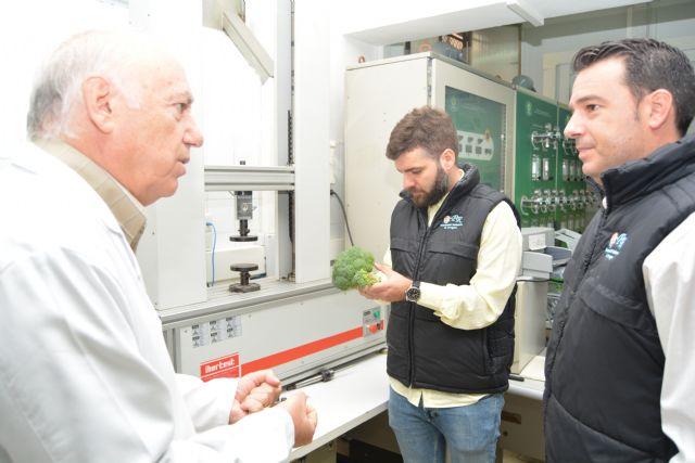 El grupo de investigación en Postrecolección y Refrigeración, galardonado en los premios Sakata - 1, Foto 1