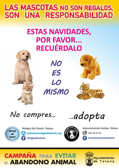 Animal Welfare launches a campaign to encourage adoption of pets and responsible ownership of these animals, Foto 2