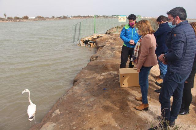 El Gobierno regional destinará casi 1,8 millones de euros en la preservación y puesta en valor de los humedales - 2, Foto 2