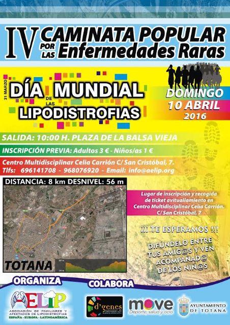 El próximo domingo tendrá lugar en la IV Caminata Popular por las Enfermedades Raras organizada por AELIP, Foto 1