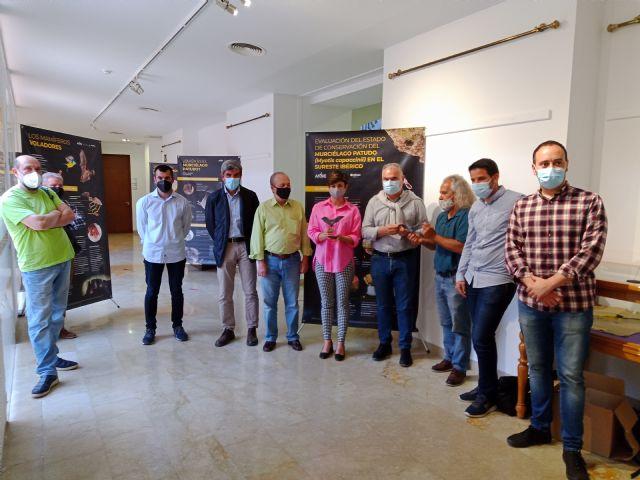 Una exposición divulga la vida secreta del murciélago patudo en Santomera - 2, Foto 2