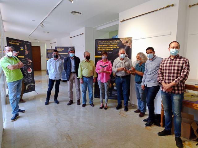 Una exposición divulga la vida secreta del murciélago patudo en Santomera - 3, Foto 3