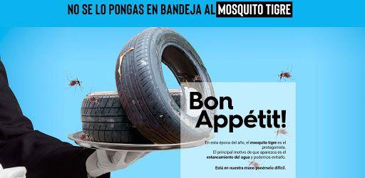 Mazarrón mantiene la lucha contra los mosquitos - 4, Foto 4