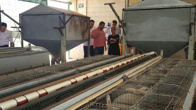 Agricultura destaca la importancia de fomentar el consumo de la carne de conejo de la Región como un producto de gran calidad, Foto 2