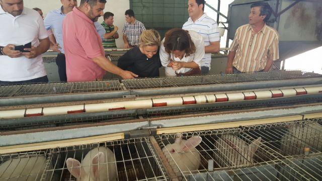 Agricultura destaca la importancia de fomentar el consumo de la carne de conejo de la Región como un producto de gran calidad, Foto 3