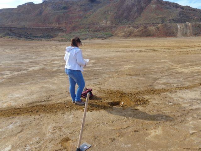 Una tesis de la Politécnica descarta riesgos de toxicidad por metales en las urbes de la Región, Foto 2