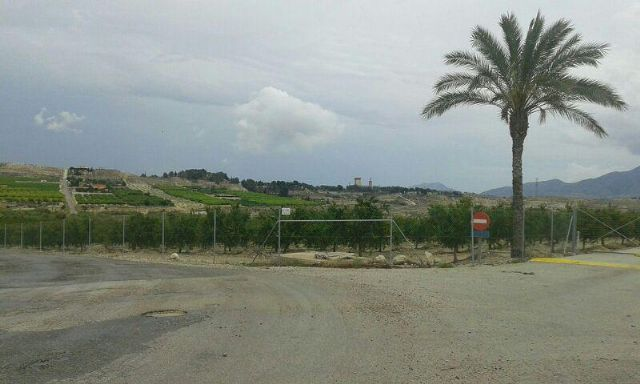 Denuncian la ocupación ilegal de una vía pecuaria en Fortuna - 1, Foto 1