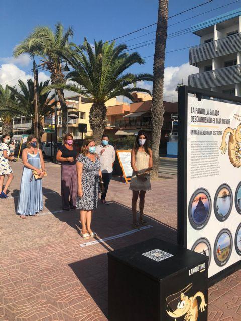 La exposición interactiva ´La pandilla salada, descubriendo el Mar Menor´ recorrerá los municipios ribereños en agosto - 1, Foto 1