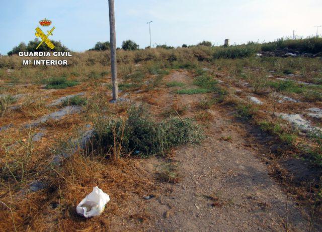 La Guardia Civil investiga a un vecino de Águilas por la captura ilegal de aves fringílidas - 1, Foto 1