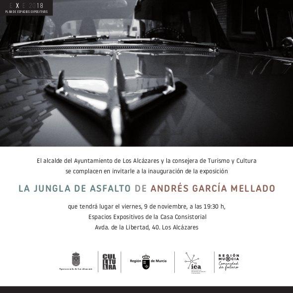 LA JUNGLA DE ASFALTO / La jungla en blanco y negro - 1, Foto 1