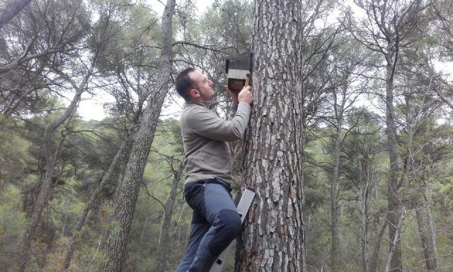 Comienza un proyecto de mejora de refugios artificiales para los murciélagos amenazados en Sierra Espuña, Foto 1