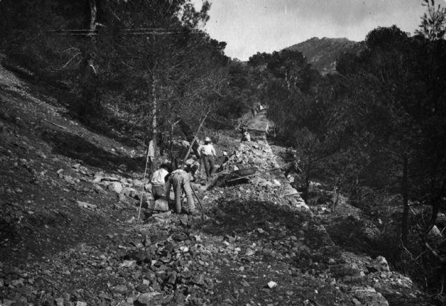 La exposición sobre la reforestación de Sierra Espuña recibe a más de mil personas en el Centro de Visitantes Ricardo Codorníu, Foto 2