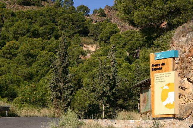 La exposición sobre la reforestación de Sierra Espuña recibe a más de mil personas en el Centro de Visitantes Ricardo Codorníu, Foto 4