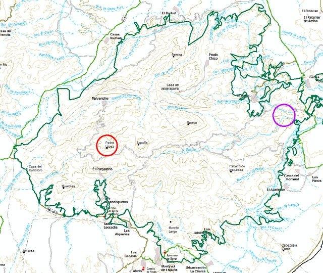 Cierre del acceso a las zonas de nidificación del Águila Real en Sierra Espuña, de enero a junio, Foto 2