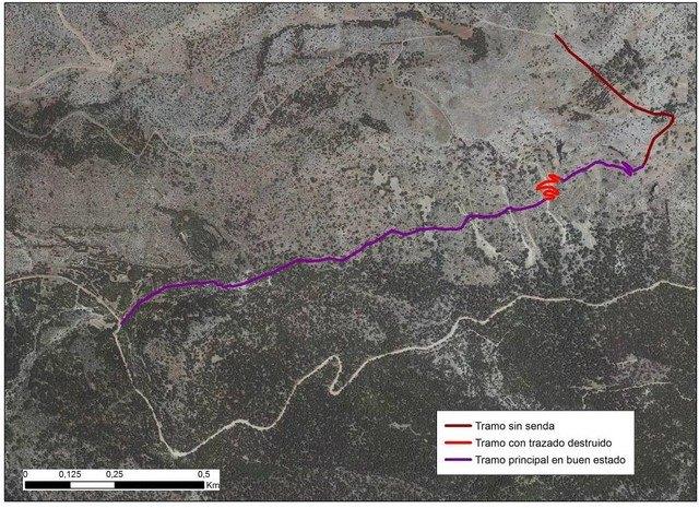 Cierre del acceso a las zonas de nidificación del Águila Real en Sierra Espuña, de enero a junio, Foto 3