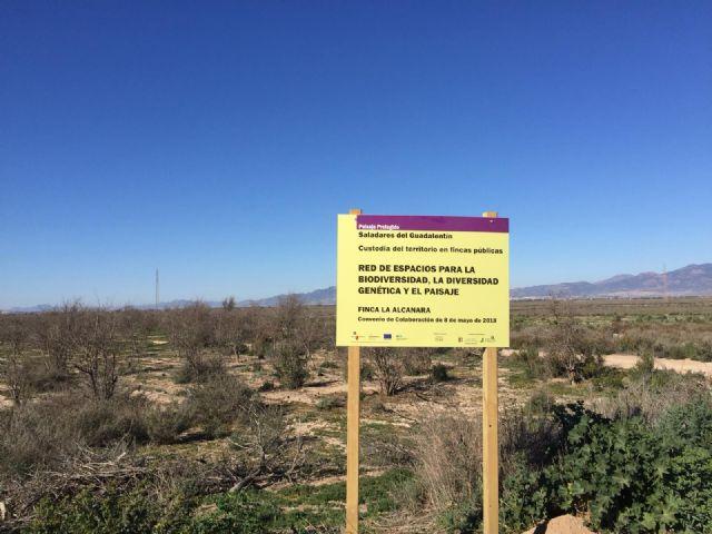 Nuevas señales en La Alcanara para resaltar su valor medioambiental y las acciones de recuperación, Foto 1