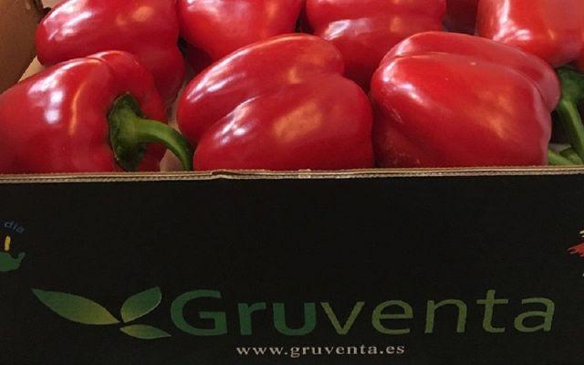 Gruventa fija sus miras en potenciar su internacionalización y forjar nuevas alianzas con más productores - 1, Foto 1