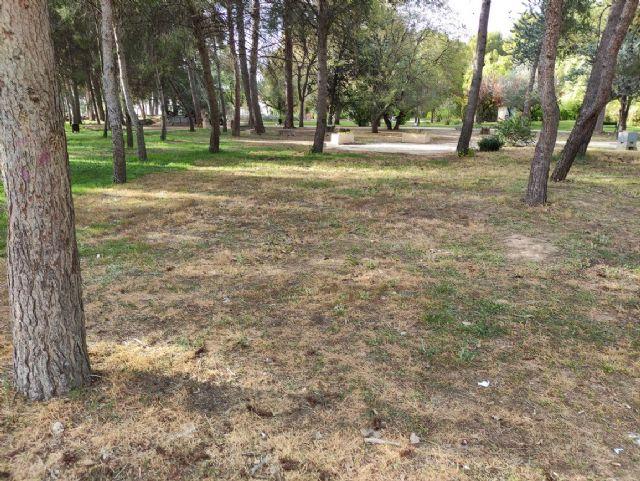 IU VERDES denuncia el más que probable uso y/o abuso de herbicida en el Jardín Botánico de Jumilla y algunas vías públicas - 2, Foto 2
