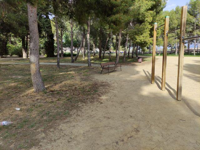IU VERDES denuncia el más que probable uso y/o abuso de herbicida en el Jardín Botánico de Jumilla y algunas vías públicas - 3, Foto 3