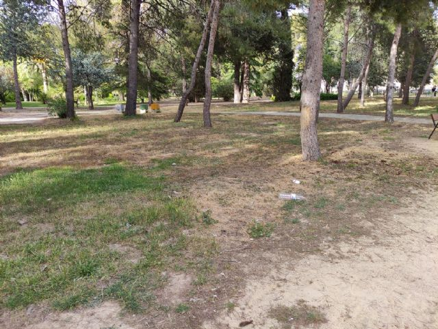 IU VERDES denuncia el más que probable uso y/o abuso de herbicida en el Jardín Botánico de Jumilla y algunas vías públicas - 4, Foto 4