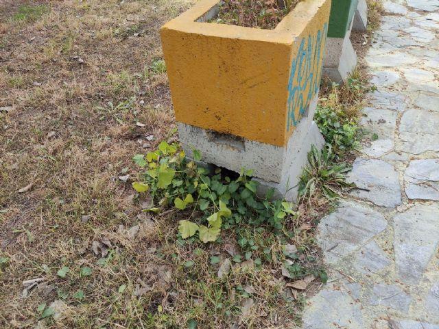 IU VERDES denuncia el más que probable uso y/o abuso de herbicida en el Jardín Botánico de Jumilla y algunas vías públicas - 5, Foto 5
