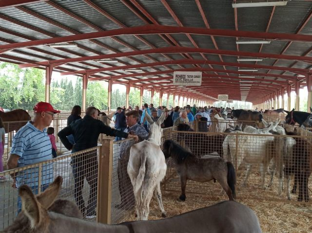 Puerto Lumbreras celebra la Feria de Ganado Equino - 1, Foto 1