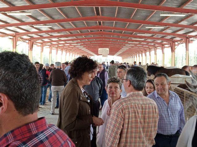 Puerto Lumbreras celebra la Feria de Ganado Equino - 3, Foto 3