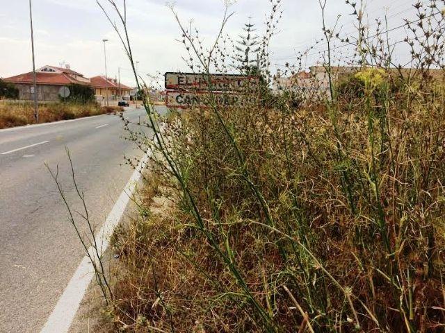 Solicitan a la Dirección General de Carreteras la limpieza de cunetas en varias vías secundarias y la travesía de El Paretón-Cantareros, Foto 1