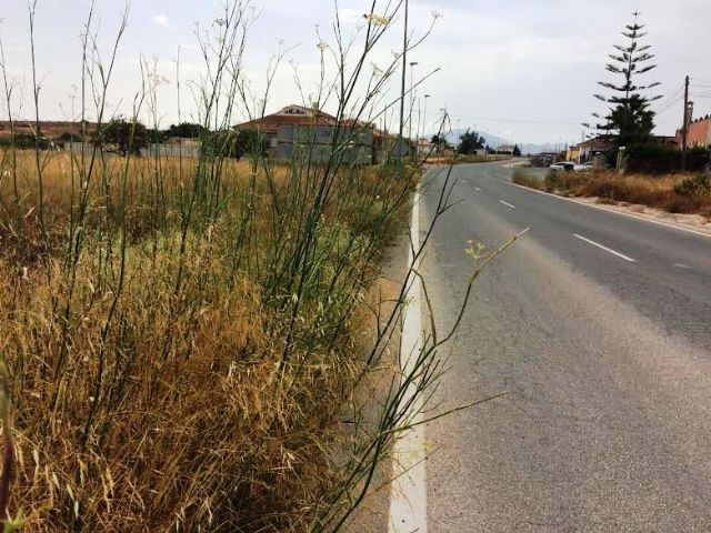Solicitan a la Dirección General de Carreteras la limpieza de cunetas en varias vías secundarias y la travesía de El Paretón-Cantareros, Foto 5