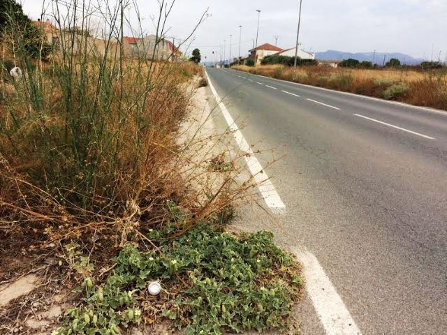 Solicitan a la Dirección General de Carreteras la limpieza de cunetas en varias vías secundarias y la travesía de El Paretón-Cantareros, Foto 6