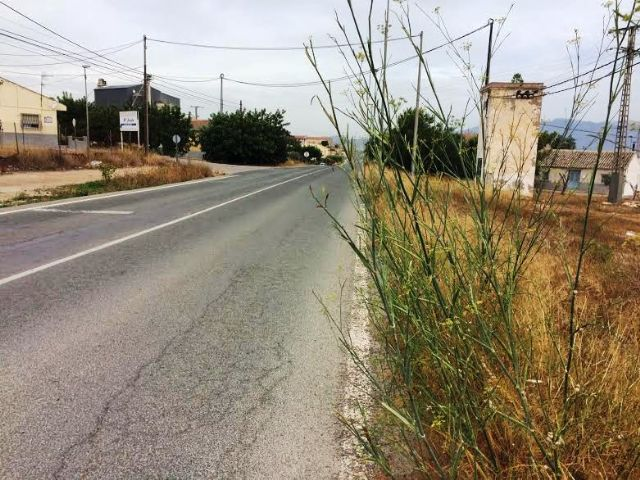 Solicitan a la Dirección General de Carreteras la limpieza de cunetas en varias vías secundarias y la travesía de El Paretón-Cantareros, Foto 8