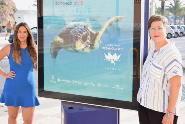 Mazarrón se suma a la campaña Tortugas en el Mediterráneo - 2, Foto 2