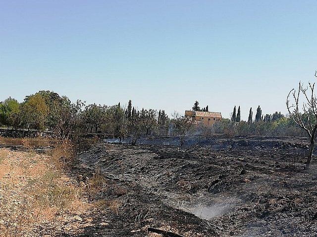 Incendio agrícola en Caravaca de la Cruz - 1, Foto 1