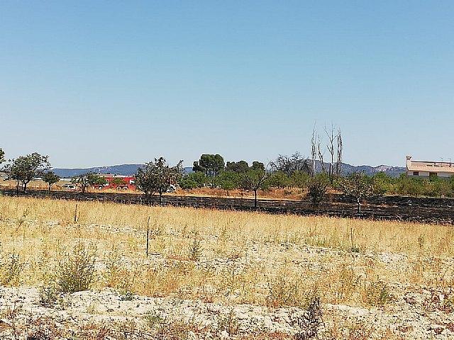 Incendio agrícola en Caravaca de la Cruz - 2, Foto 2