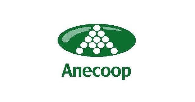 Anecoop potencia la visibilidad del sector agrario en Fruit Attraction Live Connect - 2, Foto 2