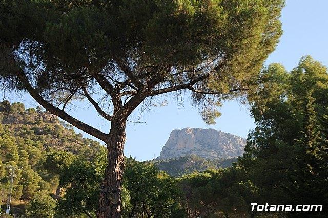 Sierra Espuña: Otoño educativo y aventurero en el Aula de Naturaleza Las Alquer�as, Foto 2