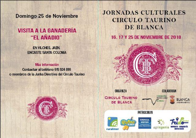 El ayuntamiento de Blanca entregará los premios de la Feria Taurina el 17 de noviembre - 2, Foto 2