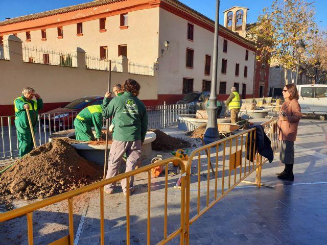 El Ayuntamiento sustituye los siete árboles que llevaban varios años talados en La Corredera por nuevas especies - 1, Foto 1